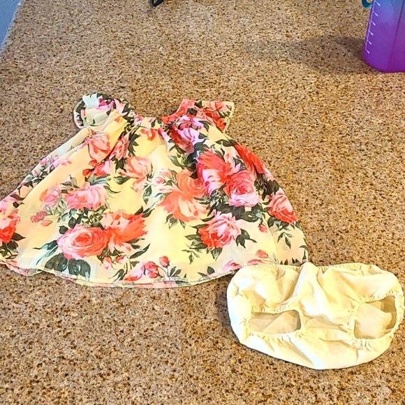 The Children's Place Baby Girl dress